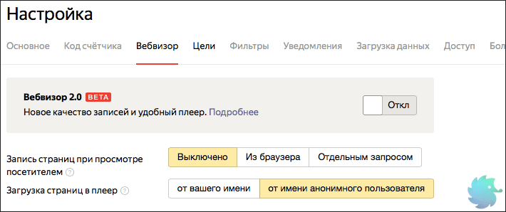 Настройка Вебвизора в Яндекс Метрики во время установки